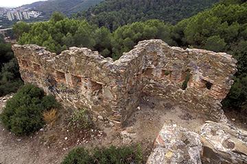 Castell Fortí