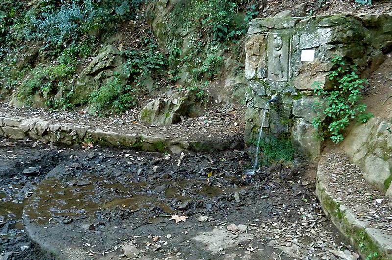 Font del Bacallà